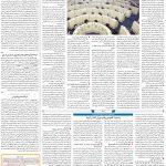 صفحه۱۱-۵ آبان ۱۴۰۰