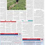 صفحه ۱۲- ۶ خرداد ۱۳۹۹