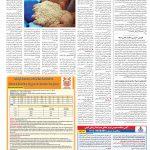 صفحه ۱۲- ۱۱ مرداد ۱۳۹۹
